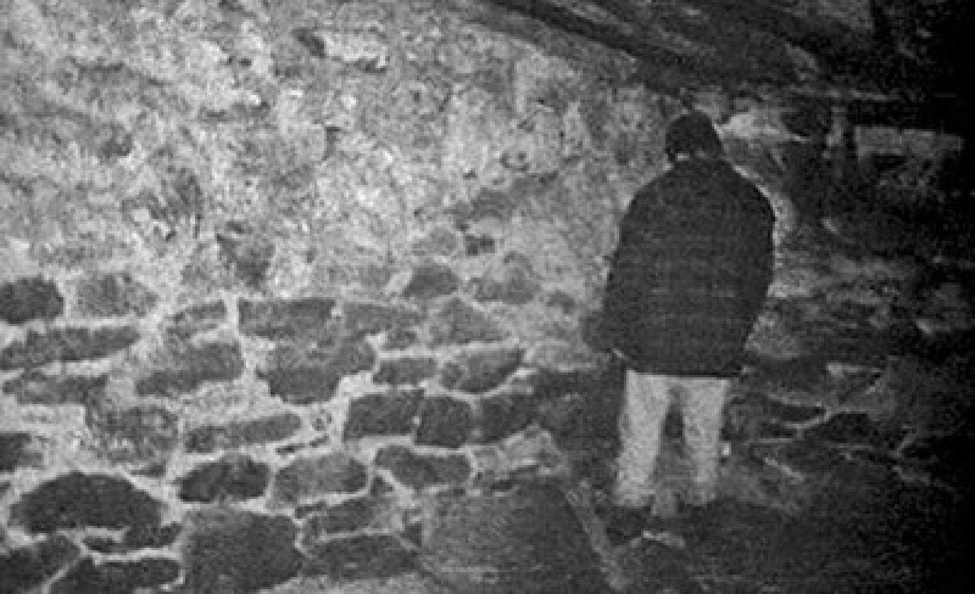 The Blair Witch Project: arriva la serie tv!