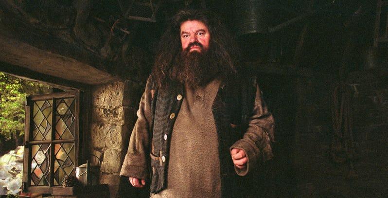 Eddie Redmayne vorrebbe Hagrid nei seguiti di Animali Fantastici