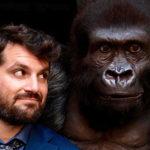 """""""Attenti al gorilla"""", la recensione"""
