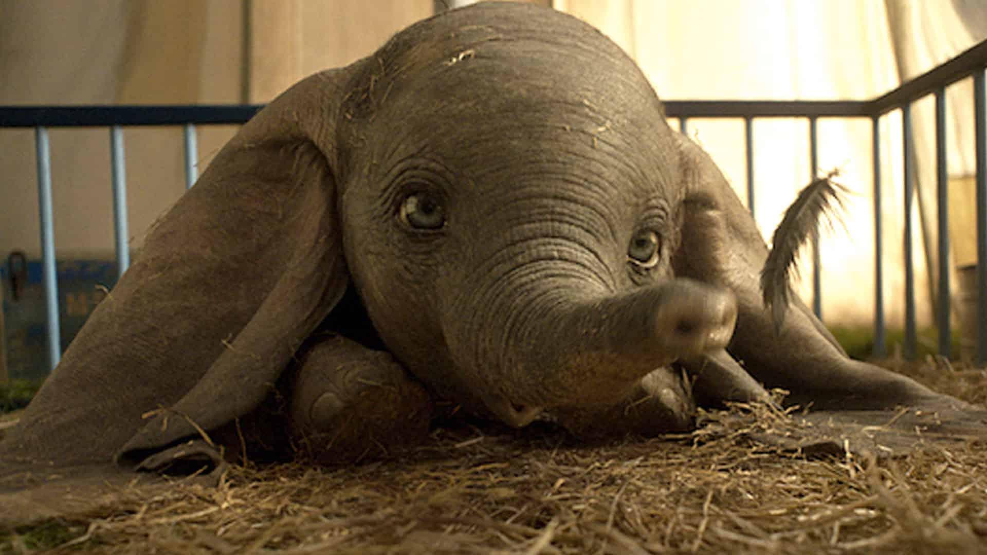 Dumbo – la recensione