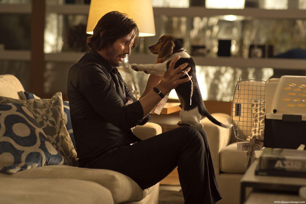 John Wick dice addio al suo amico a quattro zampe nella prima clip del terzo capitolo
