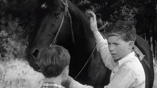 """Addio a Bobby Diamond: era il piccolo Joey in """"Furia"""""""