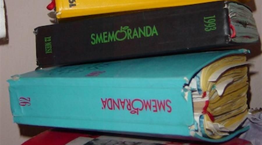 DIARIO SMEMORANDA: L'AGENDA-LIBRO PIU' IN VOGA NEGLI ANNI '90