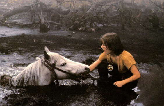 La storia infinita: la scena della morte di Artax fu girata in 3 settimane e il vero cavallo non è mai morto durante le riprese