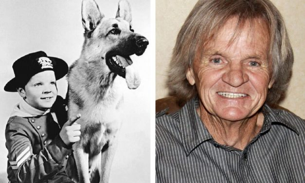 È morto Lee Aaker, l'attore di Rin Tin Tin. Era solo e in povertà