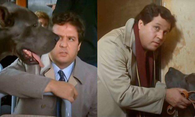"""La Casa Stregata, Pozzetto: """"Con il cane Gaetano eravamo molto amici, stava nel mio camper, era un attore indipendente"""""""